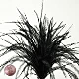 """Black Thin Ostrich Feathers, 4"""" to 6"""" (100/Pack)"""