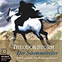 Der Schimmelreiter Audiobook by Theodor Storm Narrated by Wolfgang Büttner