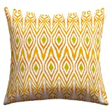 DENY Designs Amy Sia Ikat Tangerine Outdoor Throw Pillow, 16 by 16-Inch