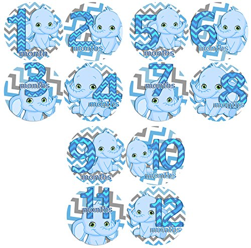 BLUE BOY CHEVRON ELEPHANTS Baby Month By Month Stickers - Baby Month Onesie Stickers Baby Shower Gift Photo Shower Stickers