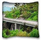 Custom Design Square Throw Pillowcase Nature bridge roads turn images vegetation wood rocks (18x18 Two Side)