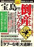 宝島 2009年 02月号 [雑誌]