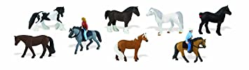 Safari - Tubo Chevaux et leurs cavaliers
