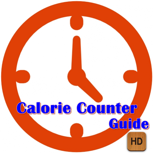 Calorie Counter Guide