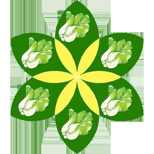 smart-caijiao