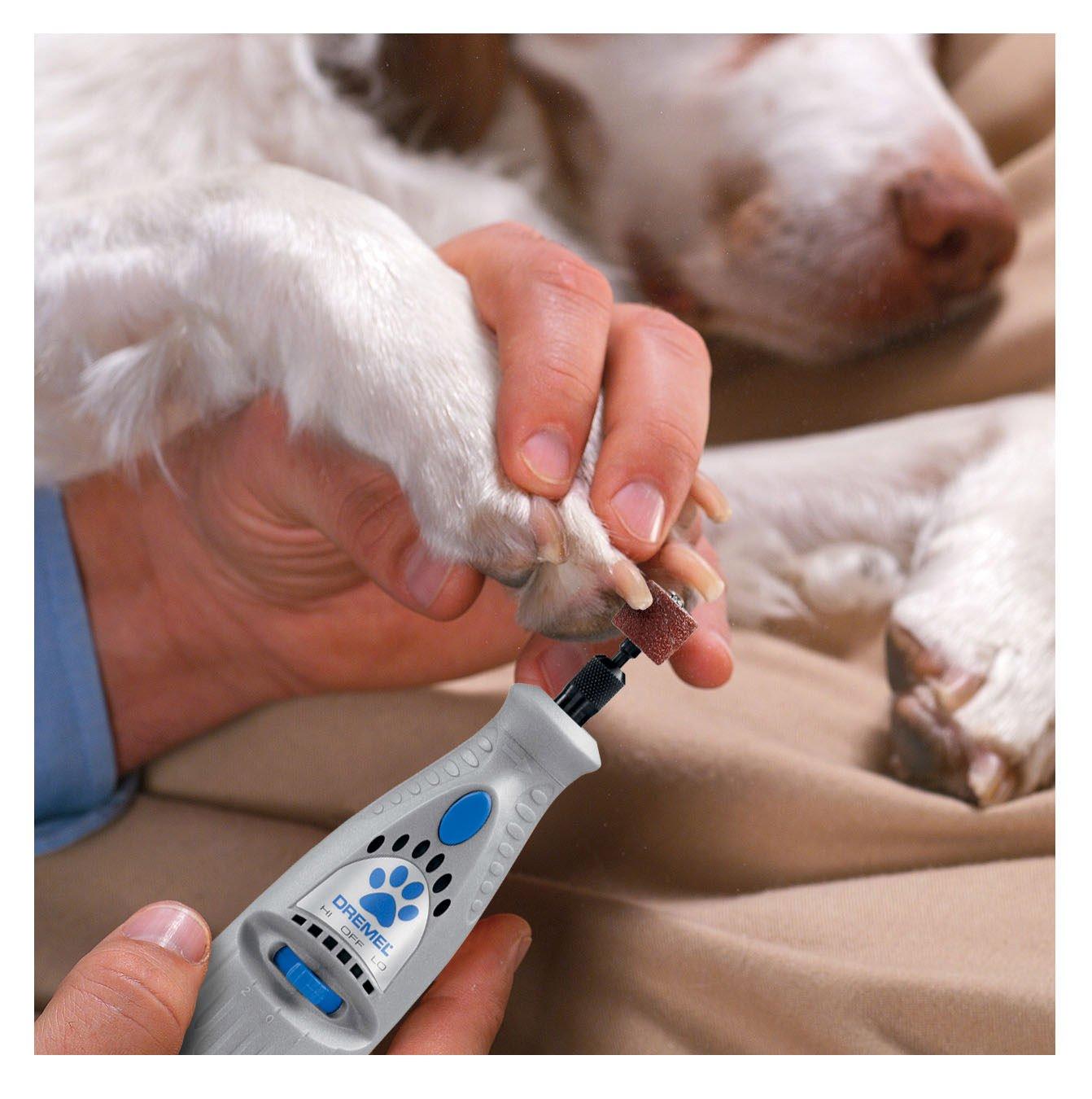 Dremel 7300-PT 4.8-Volt Pet Grooming Kit