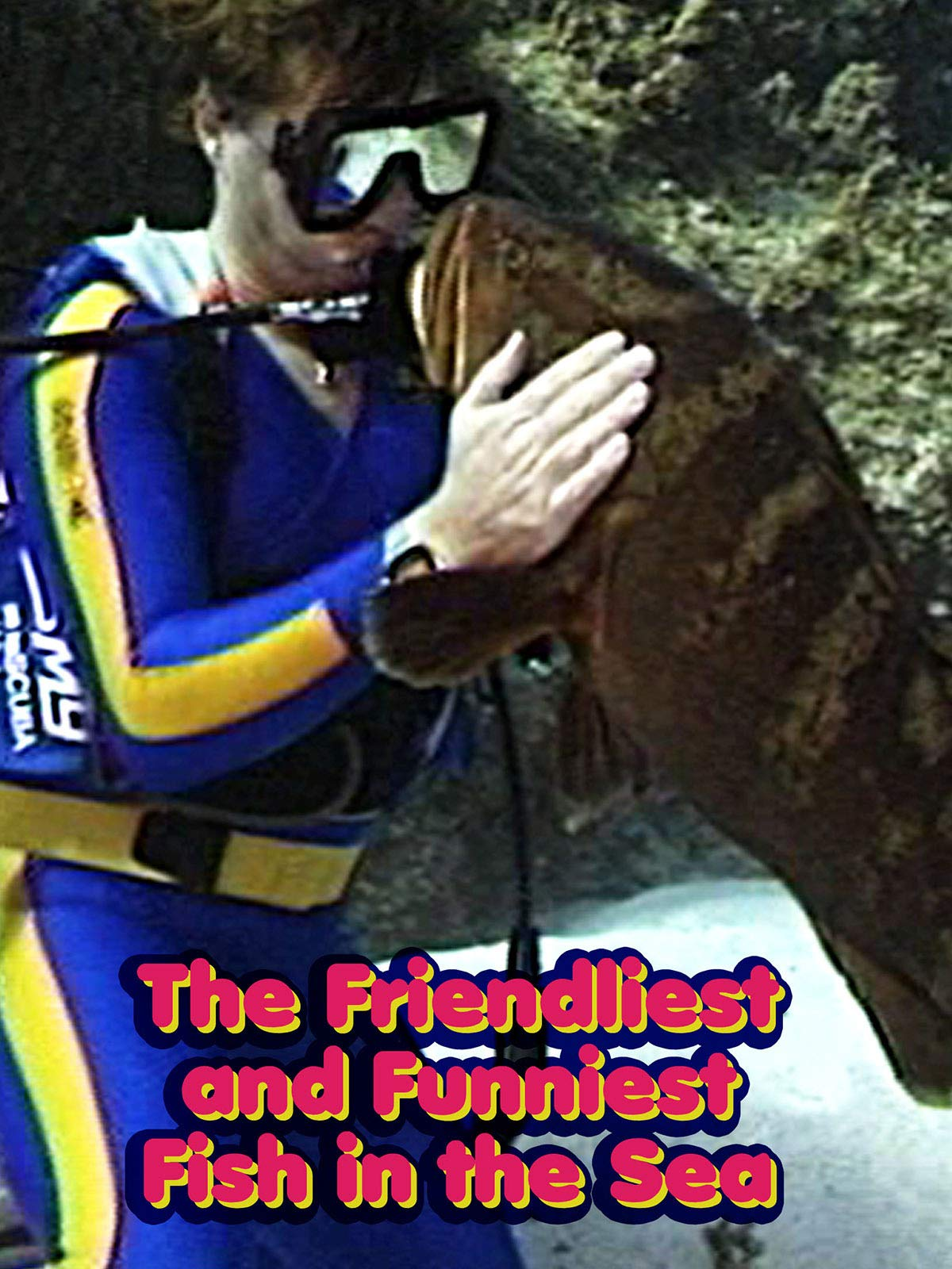 The Friendliest and Funniest Fish in the Sea