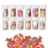 12 Pack Slime Bead Supplies,Simuer Glitter Butterfly Sequins Paillette Glitter Pack Shake Jars DIY Art Craft for Slime,Nail Art Polish,Decoration,Wedding Confetti (Tamaño: Butterfly Sequins)