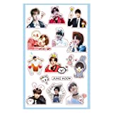 BTS BT21 Facial Cute Cartoon Sticker TATA CHIMMY RJ KOYA SHOOKY Cooky Decals Paper Doll for Car Phone Pad Laptop (1 Pack, JUNG KOOK) (Color: JUNG KOOK, Tamaño: 1 Pack)