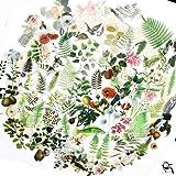 65PCS Small Scrapbook Stickers, Doraking DIY Decoration Transparent Sulfuric Paper Green Plants Stickers for Scrapbook, Decoration Without Repeat (Botanical Illustration, 65PCS/Pack) (Color: Botanical Illustration)