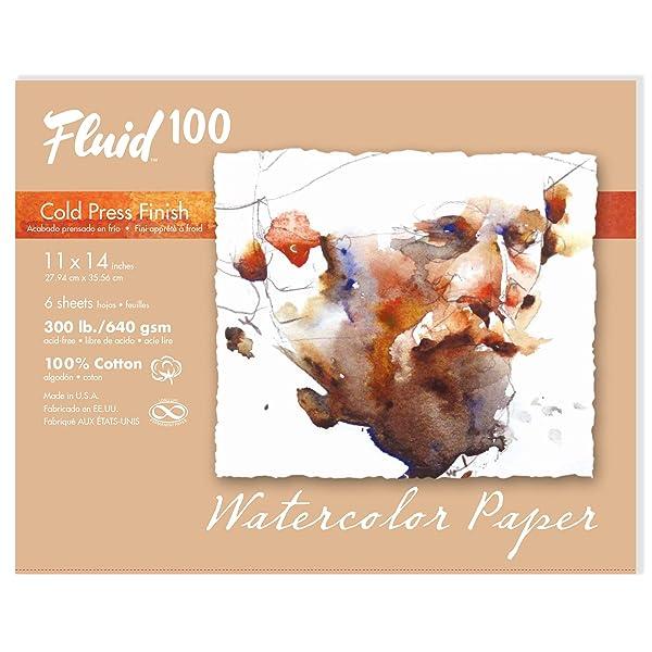 Speedball Art Products 821722 Fluid 100 Artist Watercolor Paper 300 lb Cold Press, 11 x 14-InchPochette, 100% Cotton Natural White (Color: 100% Cotton Natural White, Tamaño: 11 x 14-InchPochette)