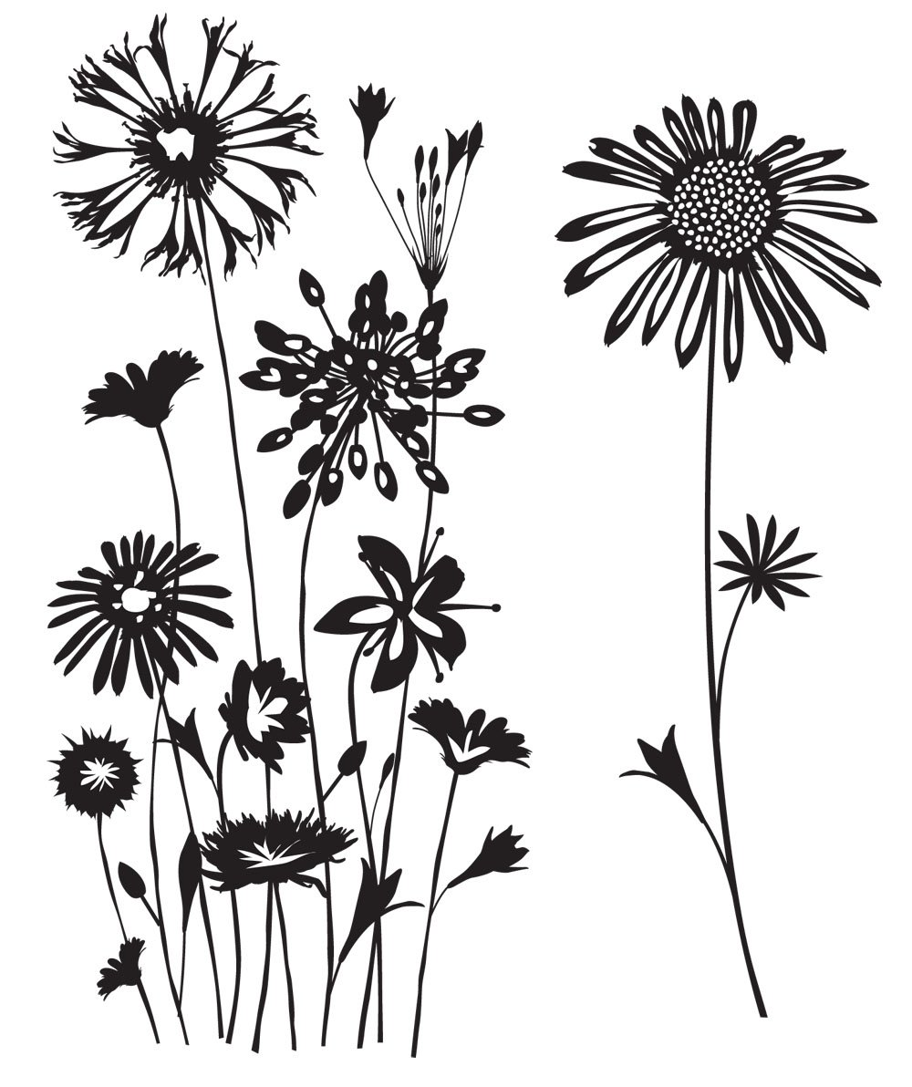 Galerry daisy flower coloring pages