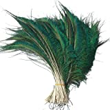 Sowder Natural Peacock Sword Feathers 10-15 Inches for Wedding Home Decoration Pcak of 200 (Color: 200 Pcs)