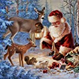 Adarl 5D DIY Diamond Painting Rhinestone Pictures of Crystals Embroidery Kits Arts, Crafts & Sewing Cross Stitch (Christmas C) (Color: Christmas C, Tamaño: 30*40cm/11.81*15.75inch)