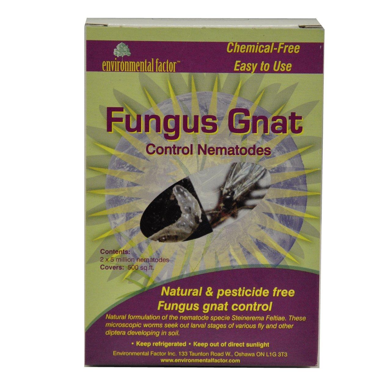 2 x 5 million beneficial nematodes nema globe for Beneficial nematodes for termites