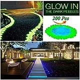 LLOP 200Pack Glow in the Dark Garden Pebbles for Walkways Outdoor Decor Aquarium Fish Tank Path Lawn Yard, Glow Stone Rocks Outdoor Garden Decorative Stones in Blue & Green (Color: Blue+green)