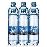 20.0 oz CPAP H20 Premium Distilled Water (Pack of 6) (Tamaño: 20oz)