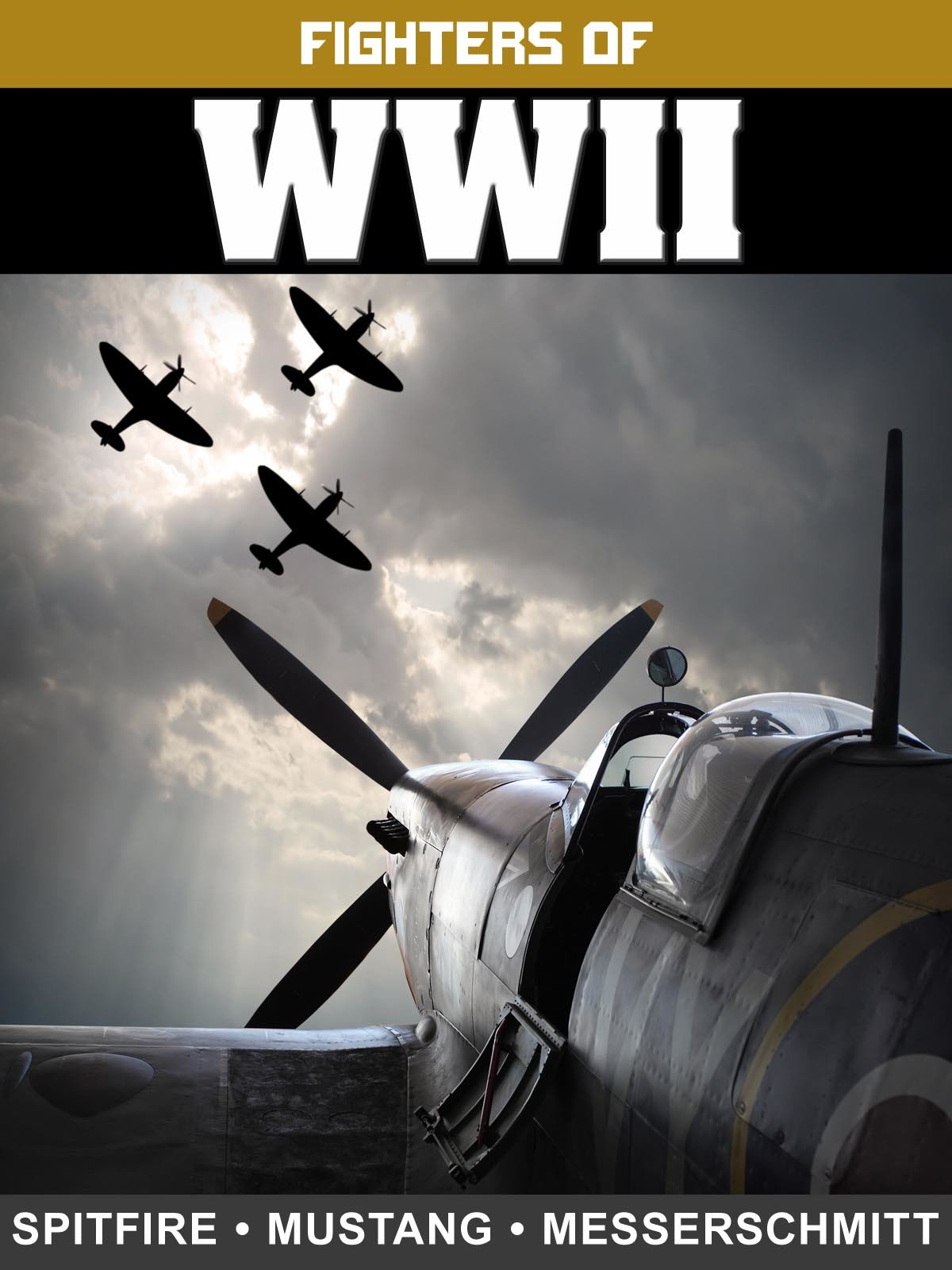 Fighters of WWII: Spitfire, Mustang, and Messerschmidt