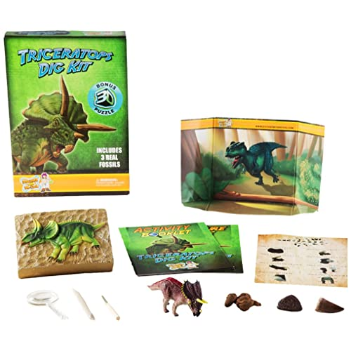 Discover with Dr. Cool Dinosaur Excavation Triceratops Dig Kit