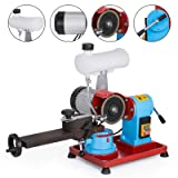 Mophorn Water Injection Grinding Grinder Machine Circular Saw Blade Sharpener Machine Rotary Angle Mill Grinding Sharpening Machine 125MM 370W for Carbide Tipped Saw Blade(370W with Water Tank) (Color: 370W with Water Tank)