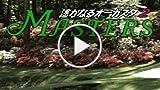 CGR Undertow - MASTERS: HARUKANARU AUGUSTA 2 Review...