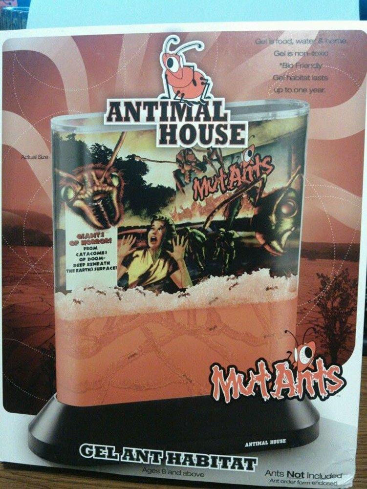 Amazon.com: Antimal House MutAnts Gel Ant Habitat: Toys & Games