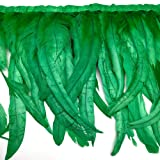 Natural Rooster Tail Feathers Fringe Trim (Green) (Color: Green)
