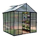 Palram Glory Hobby Greenhouse, 8' x 8'