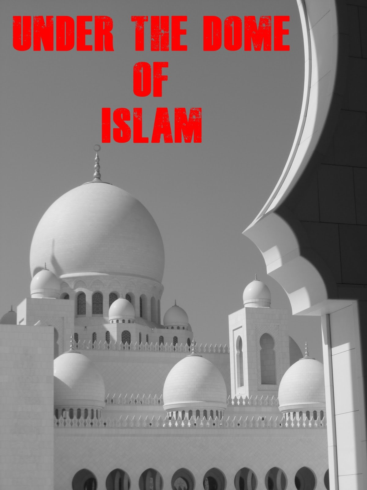 Under the Dome of Islam