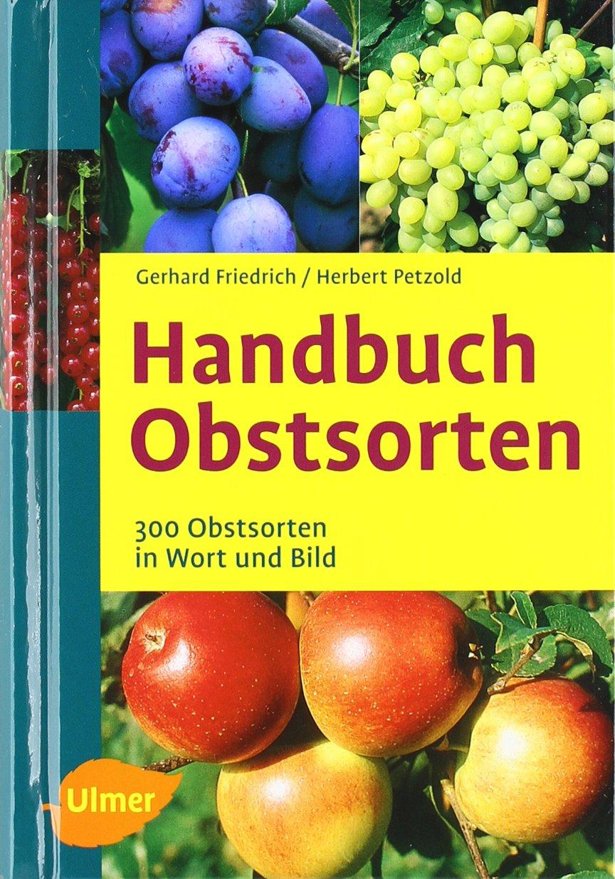 Foto Buch