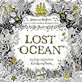 img - for Lost Ocean: An Inky Adventure and Coloring Book book / textbook / text book