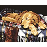 Komking Paint by Numbers for Adults Framed, DIY Oil Painting Paint by Number Kits with Brush Canvas, Waiting Dog 16x20inch (Color: Waiting Dog Framed)