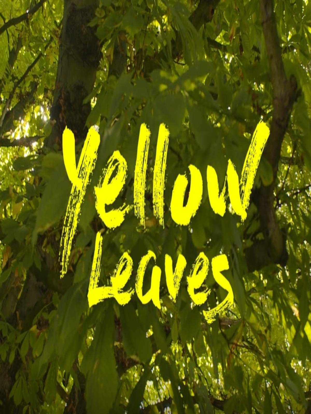 Yellow Leaves on Amazon Prime Video UK