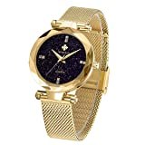WWOOR Women's Watch Fashion Star Watch Analog Quartz Watches with Stainless Steel Mesh Band Waterproof Wristwatch Casual Gift Watch Ladies (Gold)