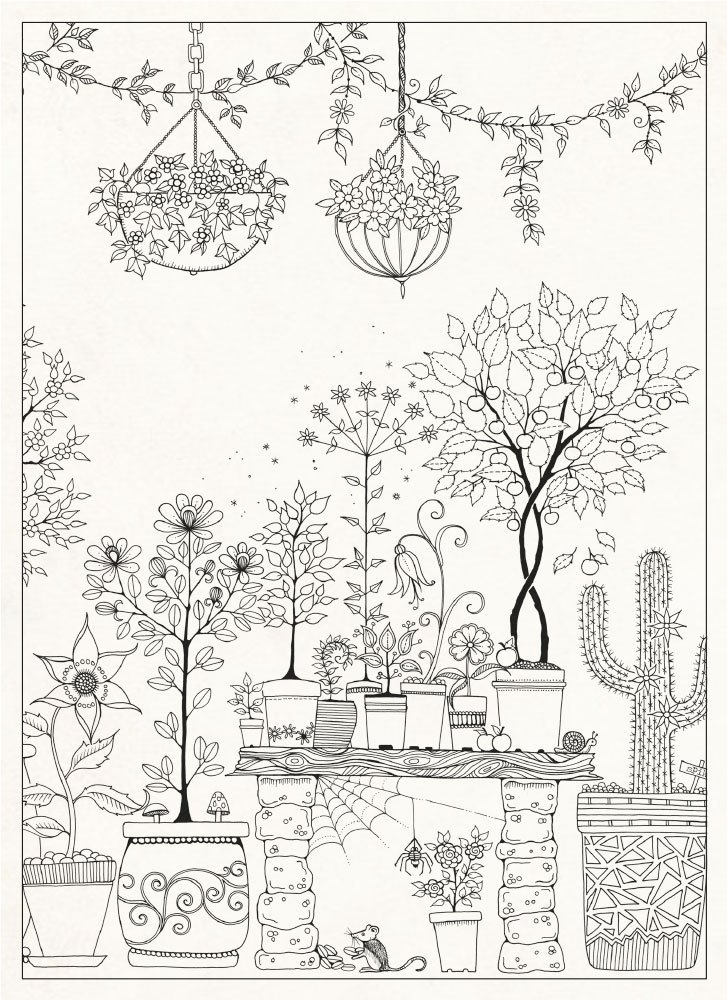 Johanna Basfords Secret Garden Colouring Postcards