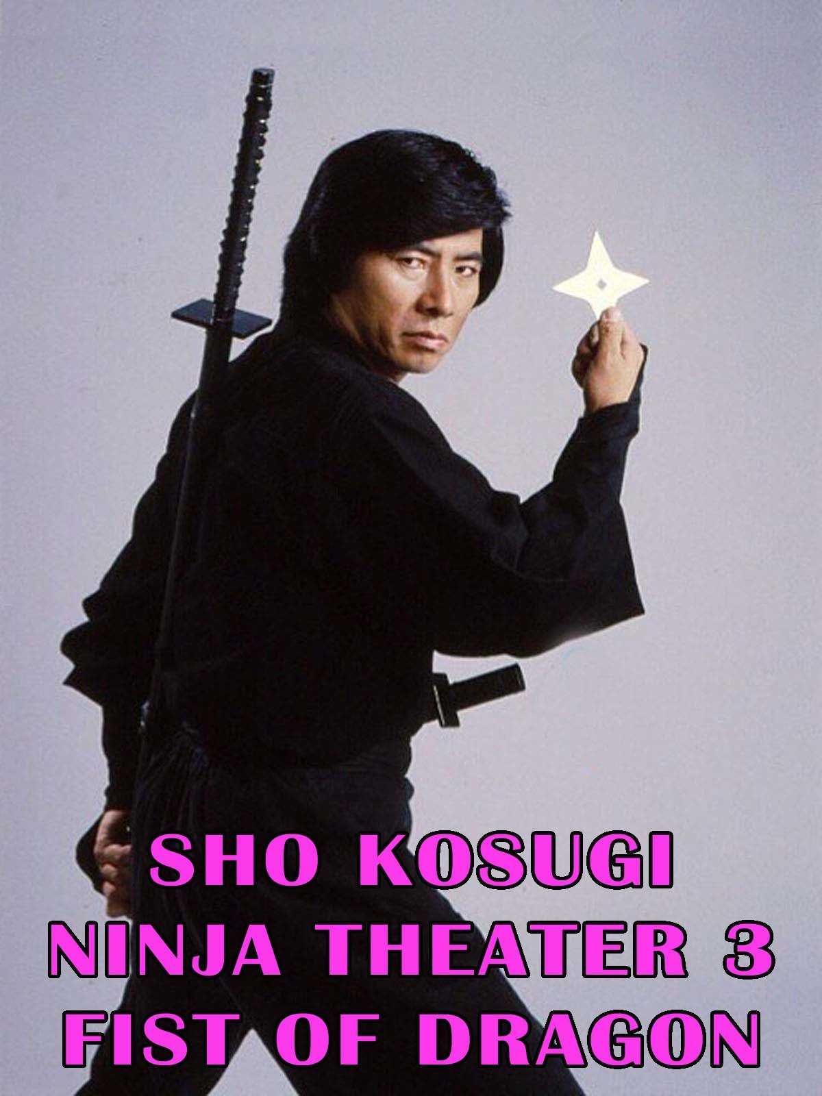 Sho Kosugi Ninja Theater Vol.3 Fist Of Dragon on Amazon Prime Video UK