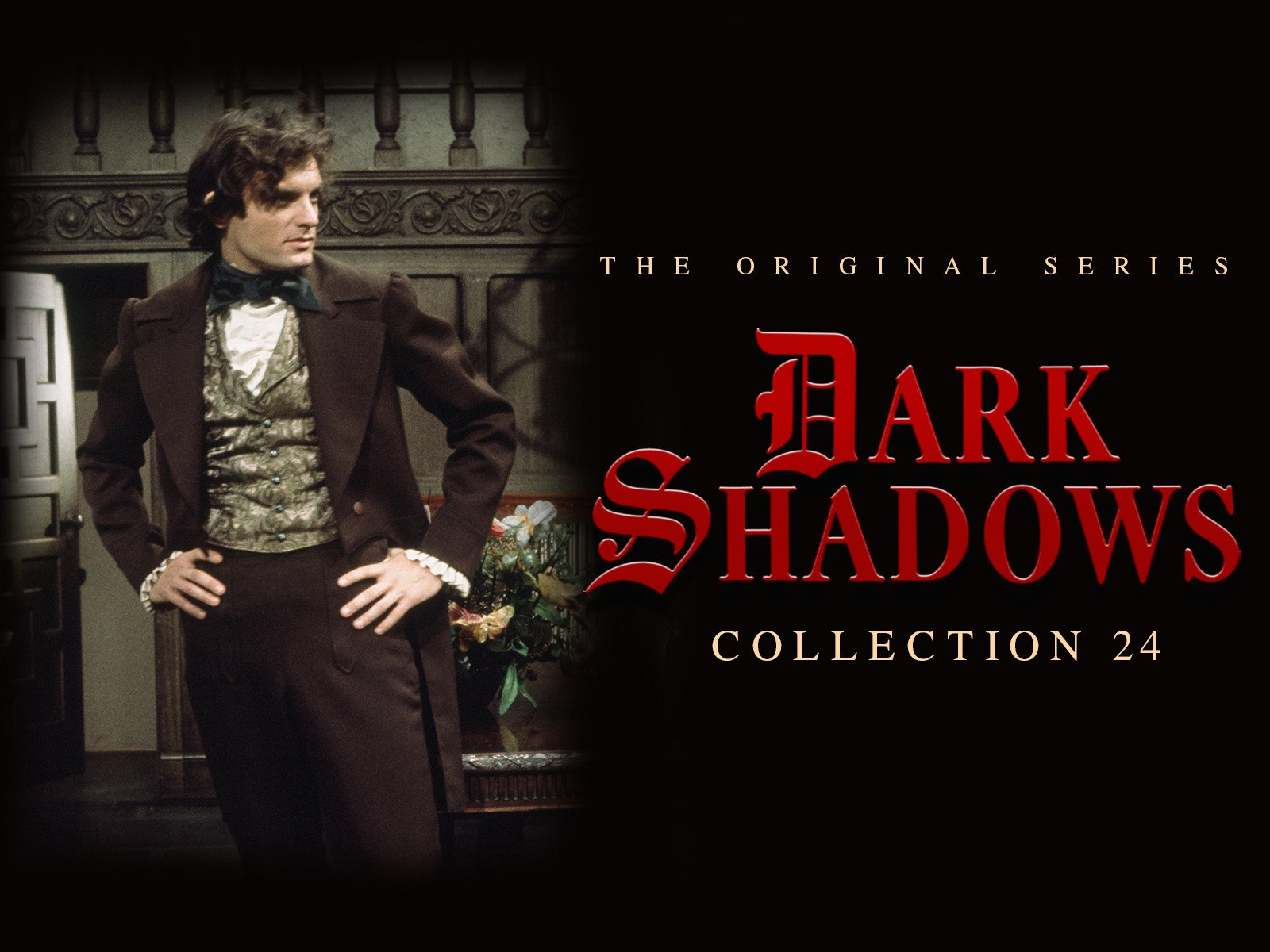 Dark Shadows - Season 24