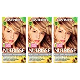 Garnier Nutrisse Nourishing Hair Color Creme, H2 Golden Blonde Highlighting Kit, 3 Count (Packaging May Vary) (Color: H2 Golden Blonde Highlighting Kit, Tamaño: 3 Count)