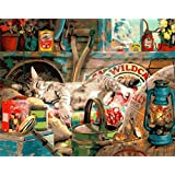 Paint by Numbers for Adults Framed   Komking DIY Paintworks Paint by Number Kits for Beginner   DIY Canvas Painting Kits for Home Wall Decoration   Dreaming Cat 16x20inch (Color: Dreaming Cat Framed)
