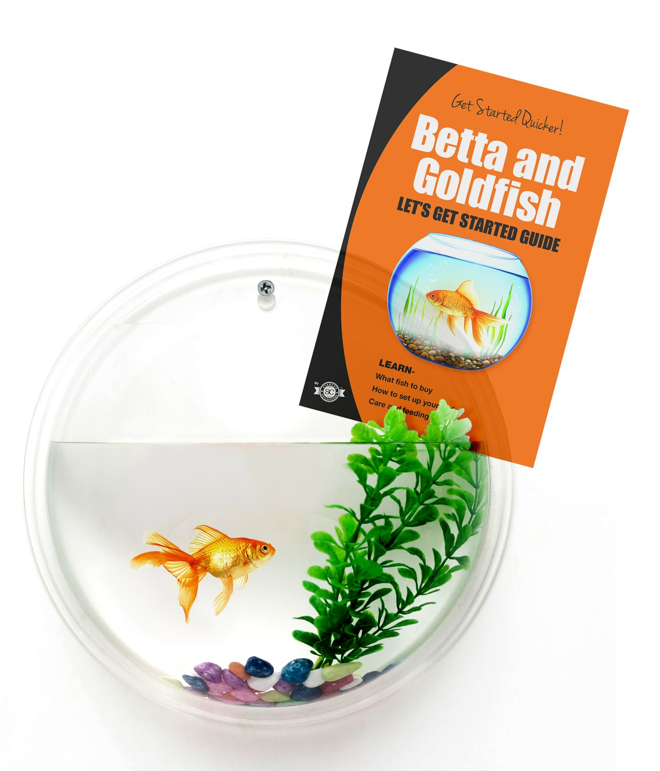 Wall Mounted Betta Fish Tanks Wall Mounted Fish Bowl Bubble