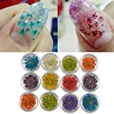 DDLBiz 12 Colors Beautiful 3D Decoration Real Dry Dried Flower For UV Gel Acrylic Nail Art Tips Nail Stickers Decal
