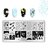 Summer Fruit Nail Art Stamping Template Tropical Punch Pattern Rectangle Image Plate Stamping Polish Needed BP-A09 (Color: BP-A09)