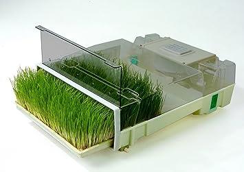 Easygreen Sprossengarten Automatischer Keimkasten