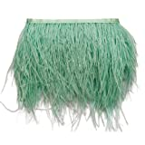 wanjin Ostrich Feathers Trims Fringe with Satin Ribbon Tape for Dress Sewing Crafts Costumes Decoration Pack of 2 Yards (Mint Green) (Color: 28#-Mint Green)