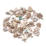Linsoir Beads Designs Mixed European Charms 36 pcs Wishbone Heart Love Anchor Assortment Bracelet Charm KC Gold Tone Charm Assortment 15 Designs Random Mixed (Color: Kc Gold Tone)
