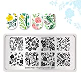 Summer Fruit Nail Art Stamping Template Tropical Punch Pattern Rectangle Image Plate Stamping Polish Needed BP-S-L0011 (Color: BP-S-L0011)