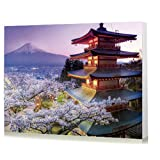 Wowdecor Paint by Numbers Kits for Adults Kids, DIY Number Painting - Japanese Landscape Cherry Blossoms Mountain Tower 40 x 50 cm - New Stamped Canvas (Framed) (Tamaño: Framed)