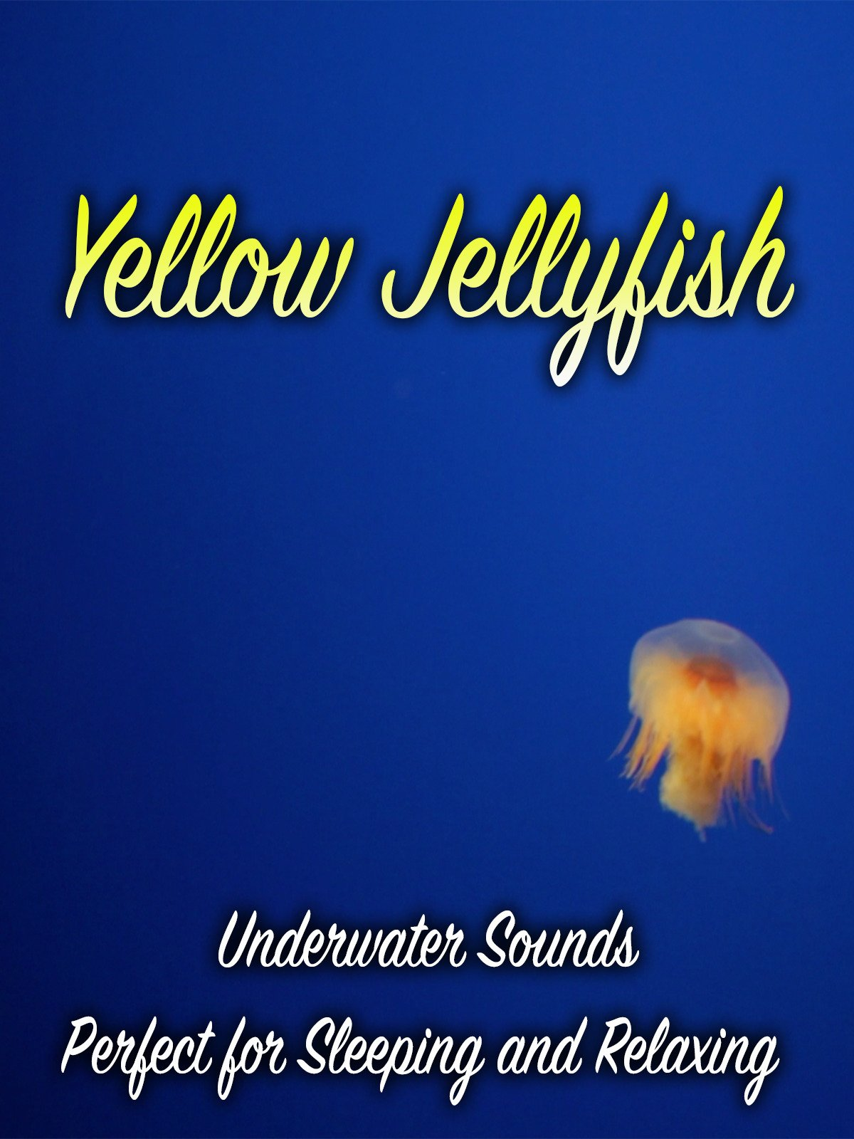 Yellow Jellyfish Underwater Sounds Perfect for Sleeping and Relaxing