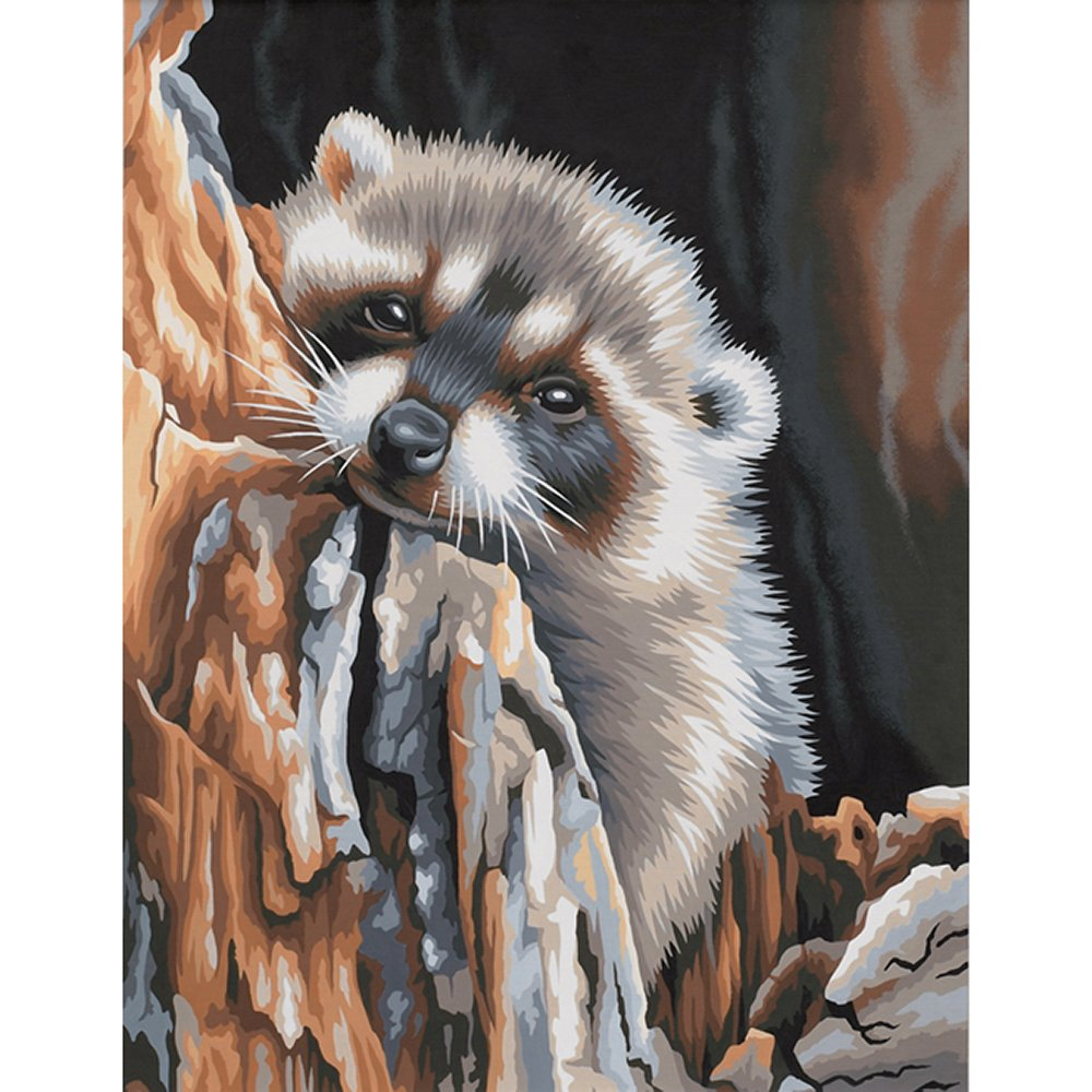 11x14 Paintworks Paint By Number, Daydreaming Raccoon