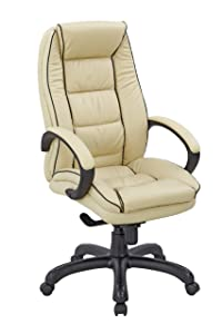 Eliza Tinsley 609KTAG/LCM High Back Leather Faced Executive Armchair with Contrasting Piping       Office Productsreviews and more info